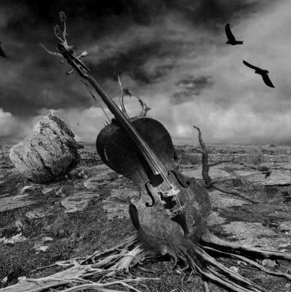 Chamber Music | Syd Scotch / Darin Munch ~ Music Soundtrack